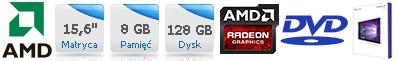 Laptop HP ProBook 655 G1 P4T29EA